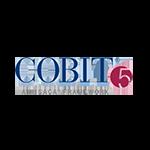 COBIT Five logo