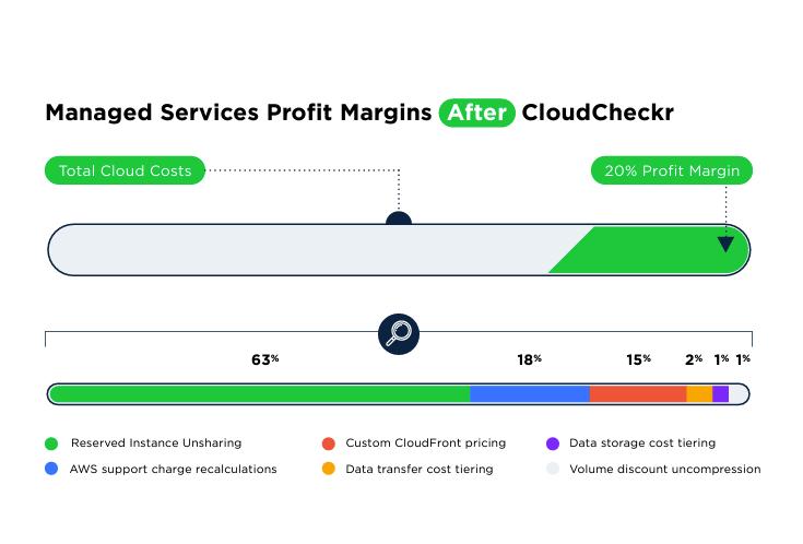 graphic showing profit margins after cloudcheckr
